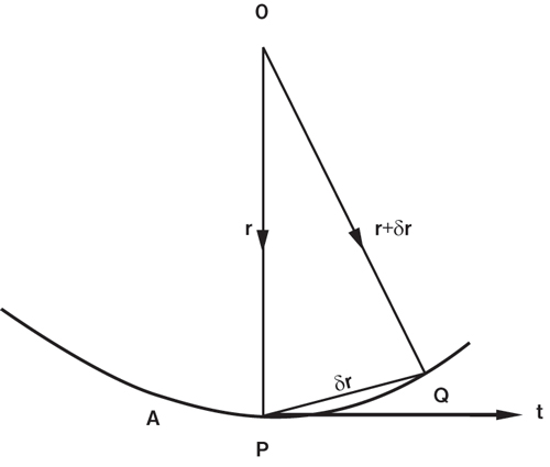 Relative Curvature of Worm & Wheel with Straight Line Generatrix